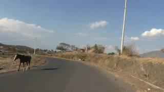 carretera loma de zempoala y el tepetate filmaciones bedolla pa que no se les olvide