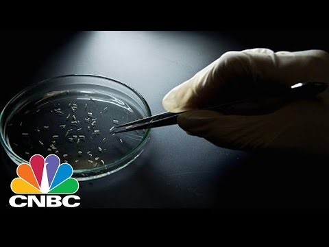 Antibiotic Resistant Superbugs Could Threaten Humanity | CNBC