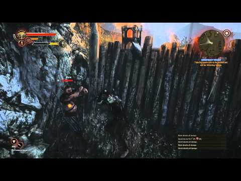 Azoic's Game-Along | The Witcher 2 - Ave Henselt (Part 037)