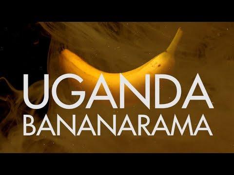 KNOW GMO VLOG: Uganda Bananarama