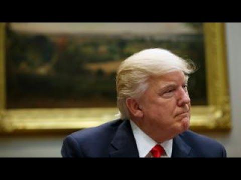 Trump vs. OECD on tax reform
