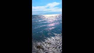 DJAK47 Tha Hustler's 🏖️Summer Vlog 2018🌅 | White Rock Beach, BC - Walking on Ocean Waters