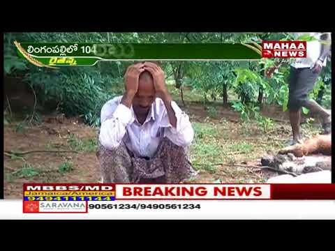 ఆదిలాబాదీలకు మోదం -ఖేదంగా మారిన వర్షాలు  | Mahaa News