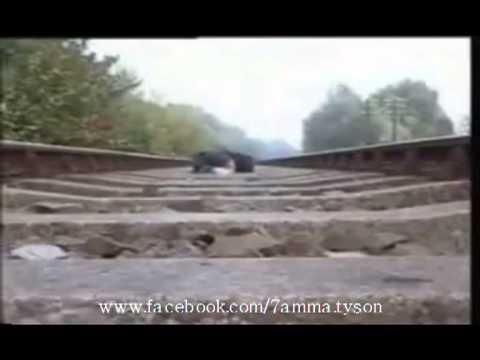 Vidéos De 7amma Tyson Chid Rou7ik Midha7k