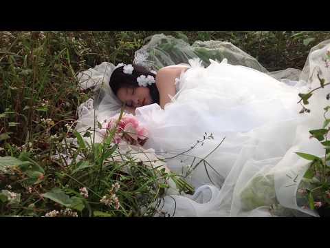 Công chúa ngủ trong rừng