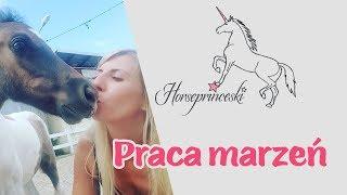 Horseprinceski - Praca marzeń