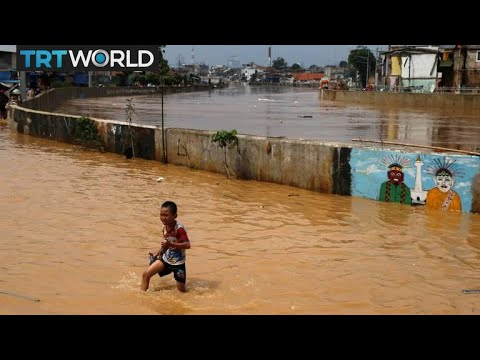 Indonesia Sinking: Rising sea levels threaten to flood Jakar