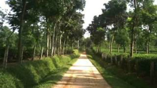 """Nazrul Geeti Folk / Patriotic """"O Bhai Khati Sonar Cheye Khati"""""""