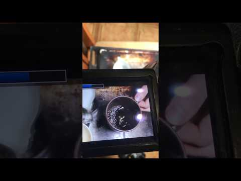 Как снять видео для стоков: кофе