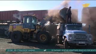 Дефицит угля в Семее: около 100 грузовиков в очереди за топливом