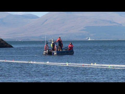 SAMS News - Deploying a new seaweed farm