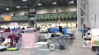 お台場のビッグサイトで開催のFCIジャパンインターナショナルドッグショ...