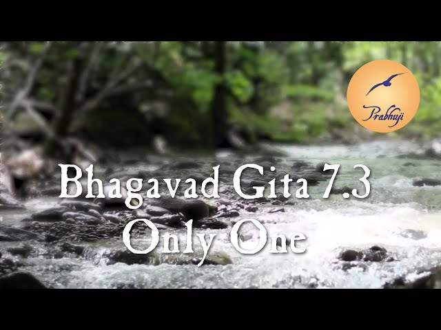 Bhagavad Gita 7.3 - Only One  by Prabhuji - English and Spanish