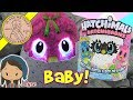 NEW Hatchimals HatchiBabies Is It A Boy Or Girl?