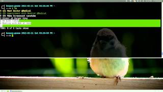 Todo.txt - Todo List Manager - Linux CLI