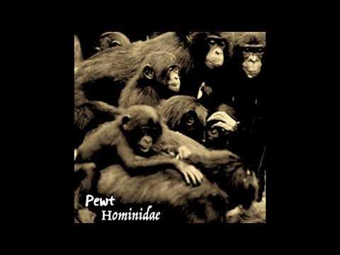 Pewt - Hominidae