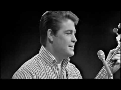 The Last Song By Brian Wilson Music Video | A Tribute to The Beach Boys
