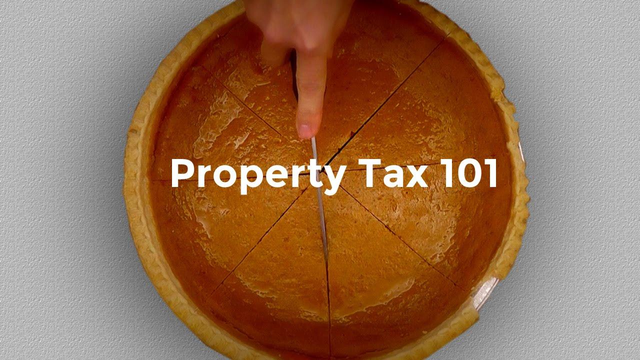 Lyon County, MN - Tax Information