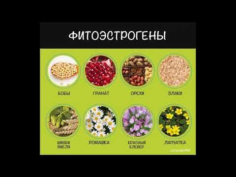 В каких продуктах содержатся фитоэстрогены
