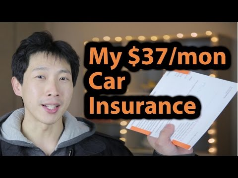 My $37 a Month Car Insurance | BeatTheBush