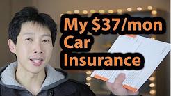My $37 a Month Car Insurance | BeatTheBush