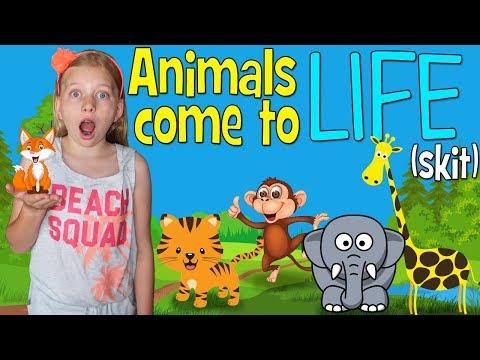 Alyssa's Animal Dolls Come to Life!