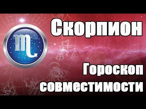 Гороскоп на ноябрь 2014 года Скорпион