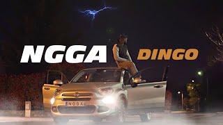 NGGA - DINGO