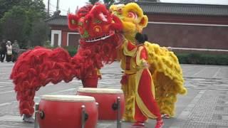 Китайские драконы (Праздник середины осени  в Китае)