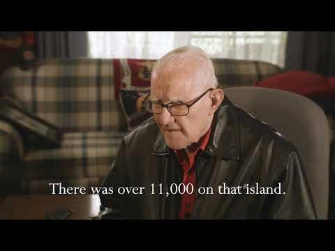 90 Days: The Battle of Peleliu