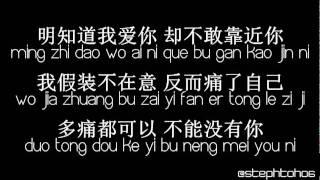 ★ PINYIN LYRICS | 龚芝怡  Gong Zhi Yi - 明知我爱你 Ming Zhi Wo Ai Ni ★