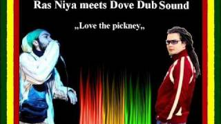 Ras Niya meets Dove Dub Sound - Love the pickney.wmv