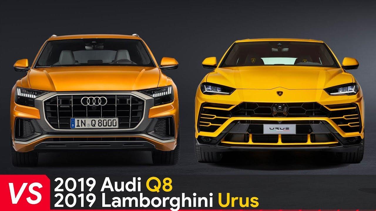 2019 Audi Q8 Vs 2019 Lamborghini Urus Youtube