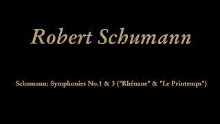 Robert Schumann - I. Lebhaft [Vivace]