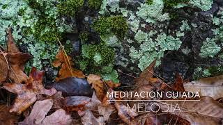 MELODIA: Meditacion Guiada de 3 Minutos | A.G.A.P.E. Wellness
