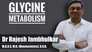 Glycine metabolism