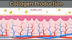 Ways to Get More Collagen in Your Skin - Stimulate Collagen Production Naturally from Within