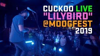 """Moogfest Cuckoo Live """"Lilybird"""""""