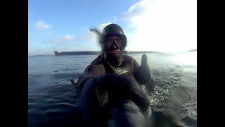 Подводная Охота Декабрь Волга Туман видимость 0 5 1 5м Кто это был