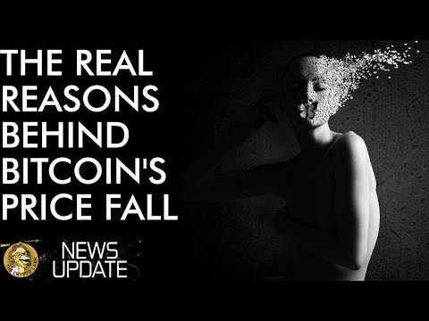 Bitcoin Price Collapse The Real Reasons