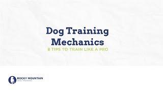 02 8 Tips To Help You Train Like A Pro