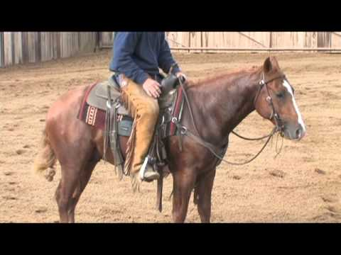Boyd Rice - Comes A Horseman