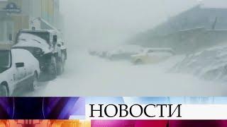 Погода удивила жителей сразу нескольких регионов.