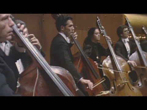 Beethoven's Ninth Symphony (New York Philharmonic, 1983)