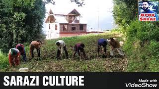 Sarazi custom and culture || Apno Saraz