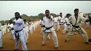 Guinness book of world records karate kata