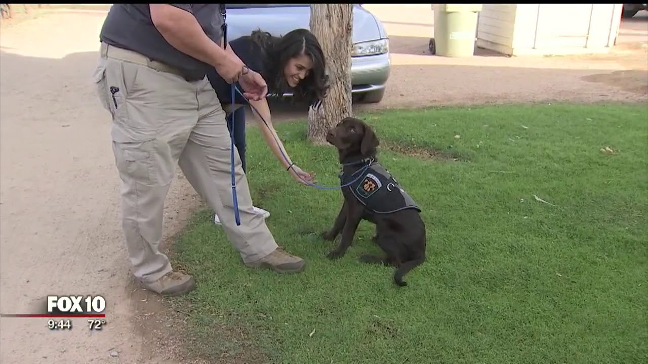 K9 joins Glendale Parks and Rec's community outreach team