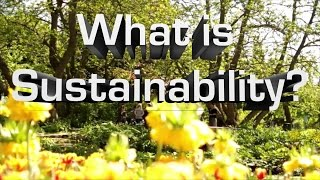 What Is Sustainability? thumbnail