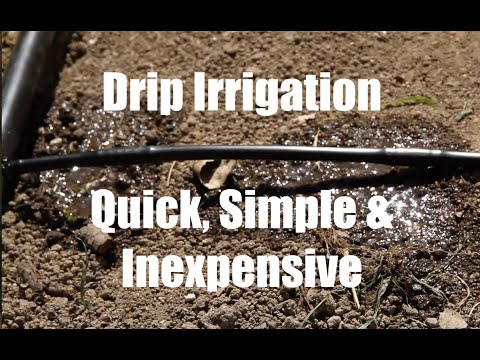 $10-garden-series-#9---how-to-install-a-drip-irrigation-system-for-your-garden