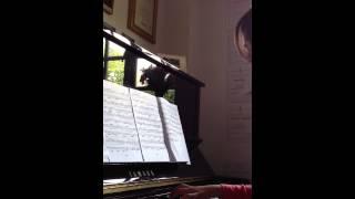 Qing Hua Ci 青花瓷 (Jay Chou) Piano Cover